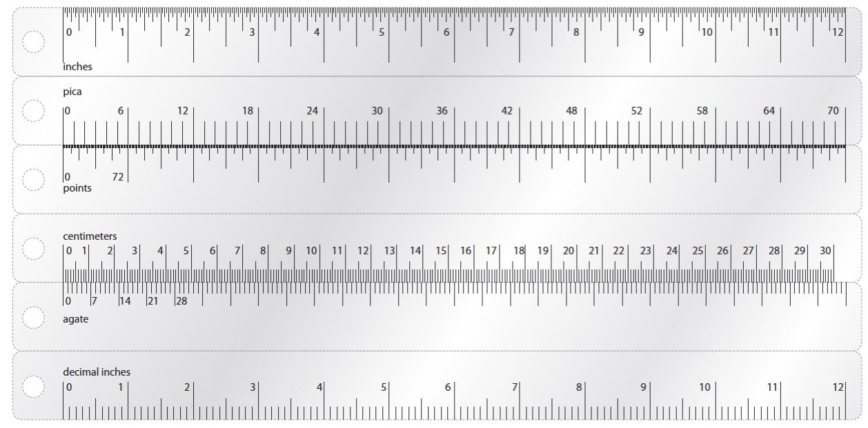 12 inch actual size   Erkal.jonathandedecker.com