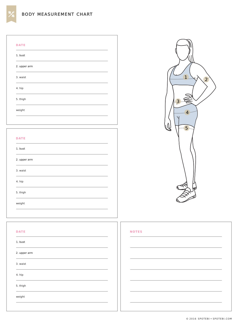 Body Measurement Chart | Fitness Tracker
