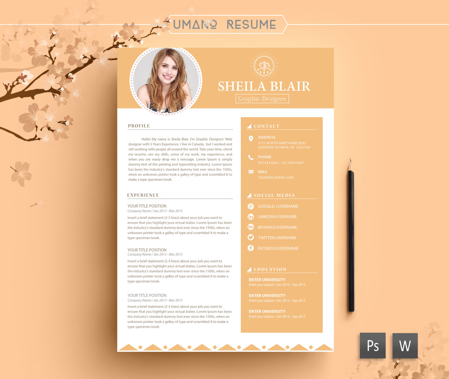 Free Printable Resume Cover Letter Templates Shop Fresh