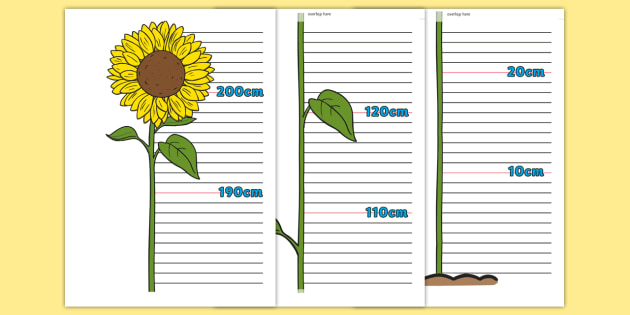 Easy DIY ruler growth chart | House Mix