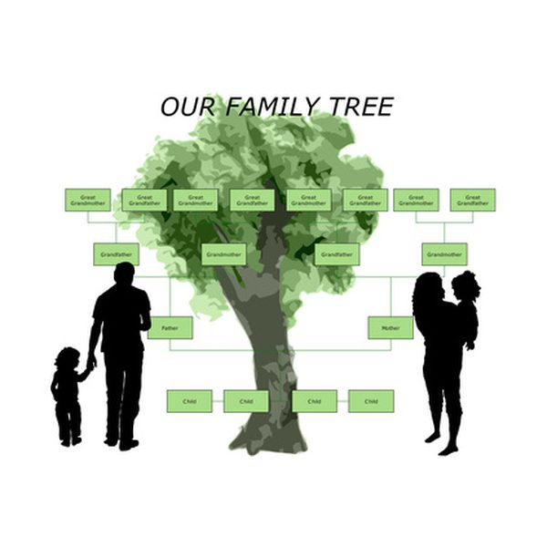 How to Make a Family Tree Using a Free Template | Our Everyday Life
