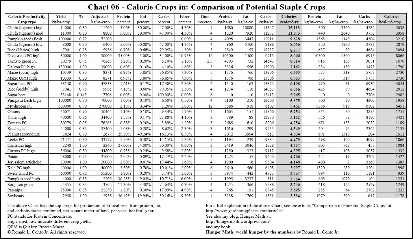 calories in food chart   Ibov.jonathandedecker.com