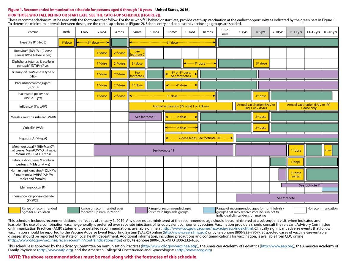 38 Useful Immunization & Vaccination Schedules [PDF]   Template Lab