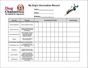 Free Printable Dog Vaccination Record | Free Printable Pet Health